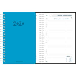 Diary Daily 2020 Blue