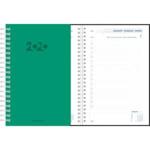 Diary Daily 2020 Green