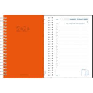 Diary Daily 2020 Orange