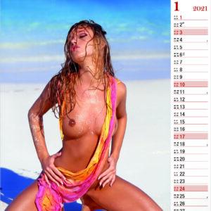 Wall calendar Tropical Girls 2021 January