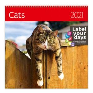 Wall calendar 30x30 Cats 2021