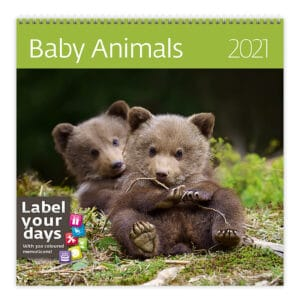 Wall calendar 30x30 Baby Animals 2021