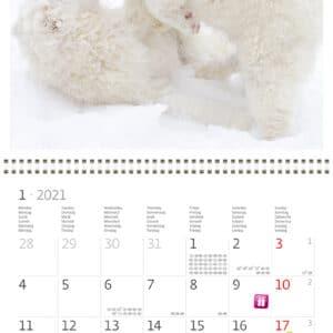 Wall calendar 30x30 Friends 2021 January