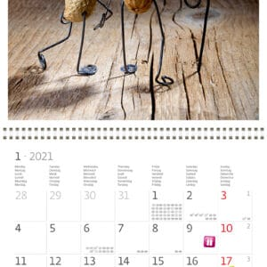 Wall calendar 30x30 Funny Nuts 2021 January