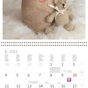 Wall calendar 30x30 Babies 2021 January