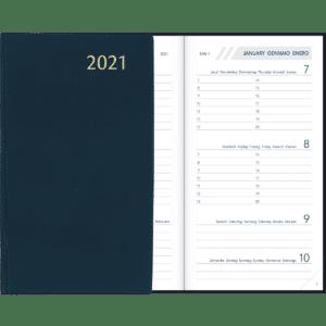 Diary Visuplan 202 Blue