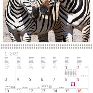 Wall calendar Animal Friends 2022 January