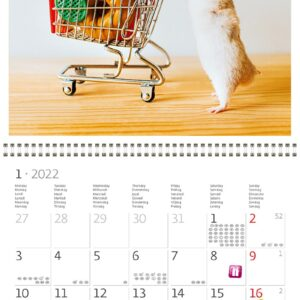 Wall calendar Little Fun 2022 January