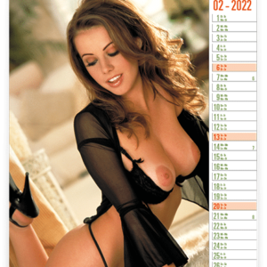 Calendar pinup Top Exclusive 2022 February
