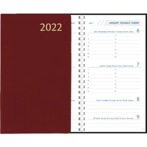 Diary Visuplan comb bound 2022 Burgundy