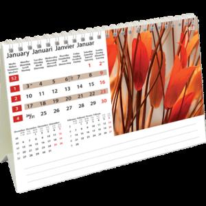 Desk calendar Colours of Nature 2022 January