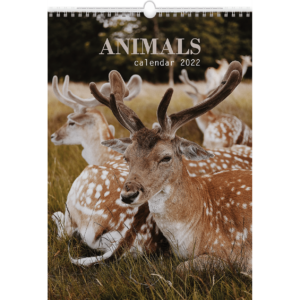 Wall calendar Animals 2022