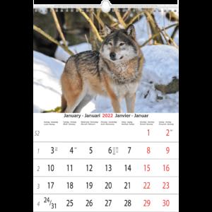 Wall calendar Animals 2022 January